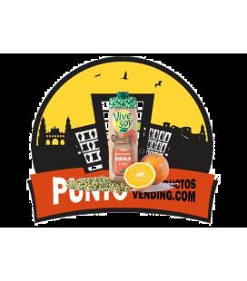 Vive Soy Zumo Piña y Soja 1L
